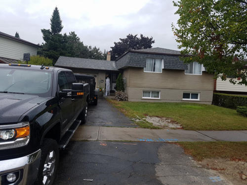 Plywood removal replace architectural shingles - brampton